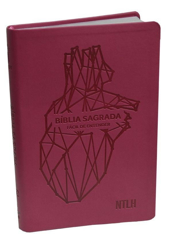 Bíblia Fácil De Entender Ntlh - Capa Emborrachada Rosa